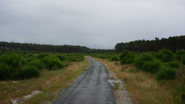 Lange paden in les Landes